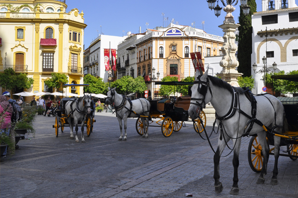 Horse drawn carriages outside Sevilla Cathedral