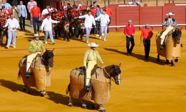Sevilla, Spain - Bullfights and Cathedrals